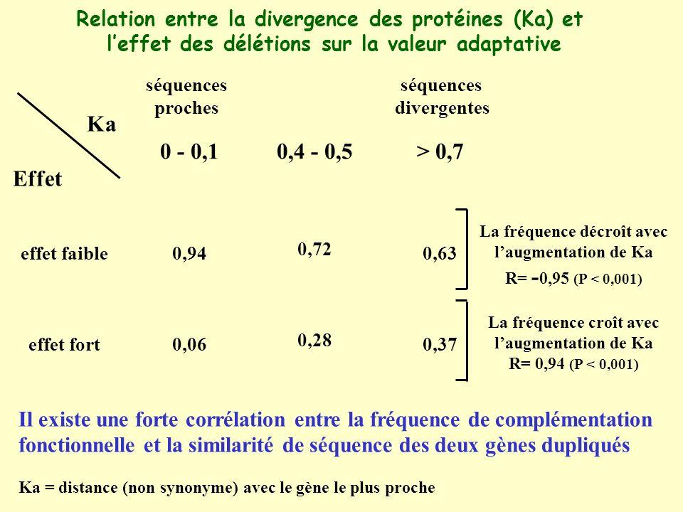 Ka = distance (non synonyme) avec le gène le plus proche Ka Effet effet faible effet fort 0 - 0,1 0,94 0,06 0,4 - 0,5 0,72 0,28 > 0,7 0,63 0,37 séquences divergentes séquences proches La fréquence décroît avec laugmentation de Ka R= - 0,95 (P < 0,001) La fréquence croît avec laugmentation de Ka R= 0,94 (P < 0,001) Il existe une forte corrélation entre la fréquence de complémentation fonctionnelle et la similarité de séquence des deux gènes dupliqués Relation entre la divergence des protéines (Ka) et leffet des délétions sur la valeur adaptative