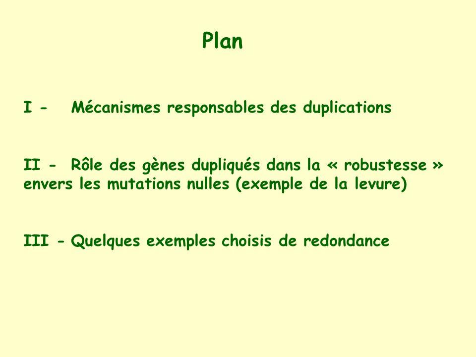 Plan I -Mécanismes responsables des duplications II -Rôle des gènes dupliqués dans la « robustesse » envers les mutations nulles (exemple de la levure) III -Quelques exemples choisis de redondance