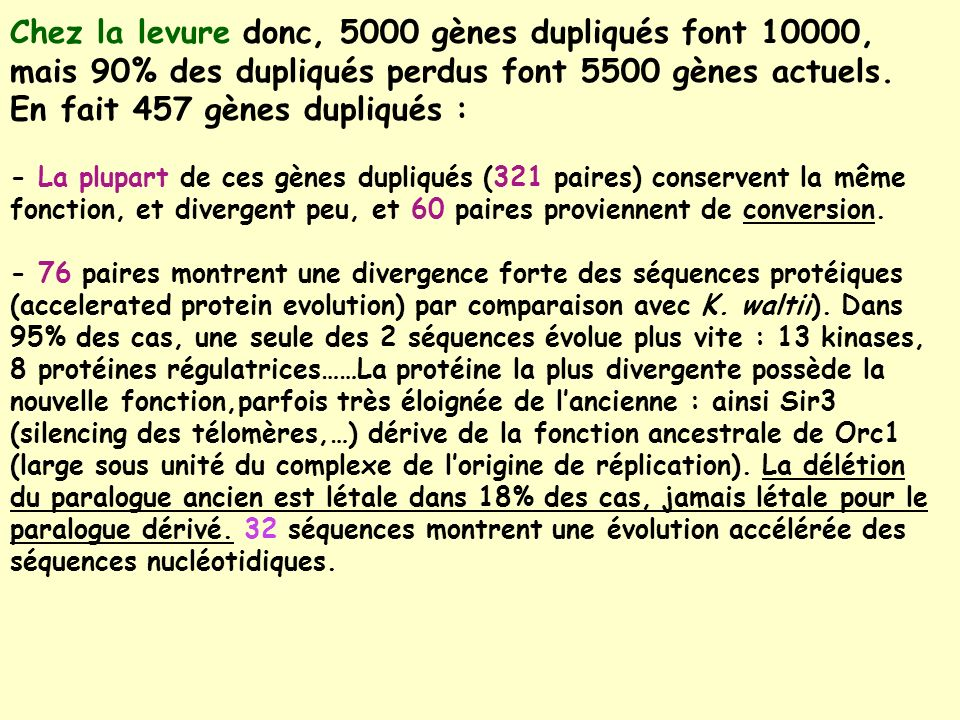 Chez la levure donc, 5000 gènes dupliqués font 10000, mais 90% des dupliqués perdus font 5500 gènes actuels.