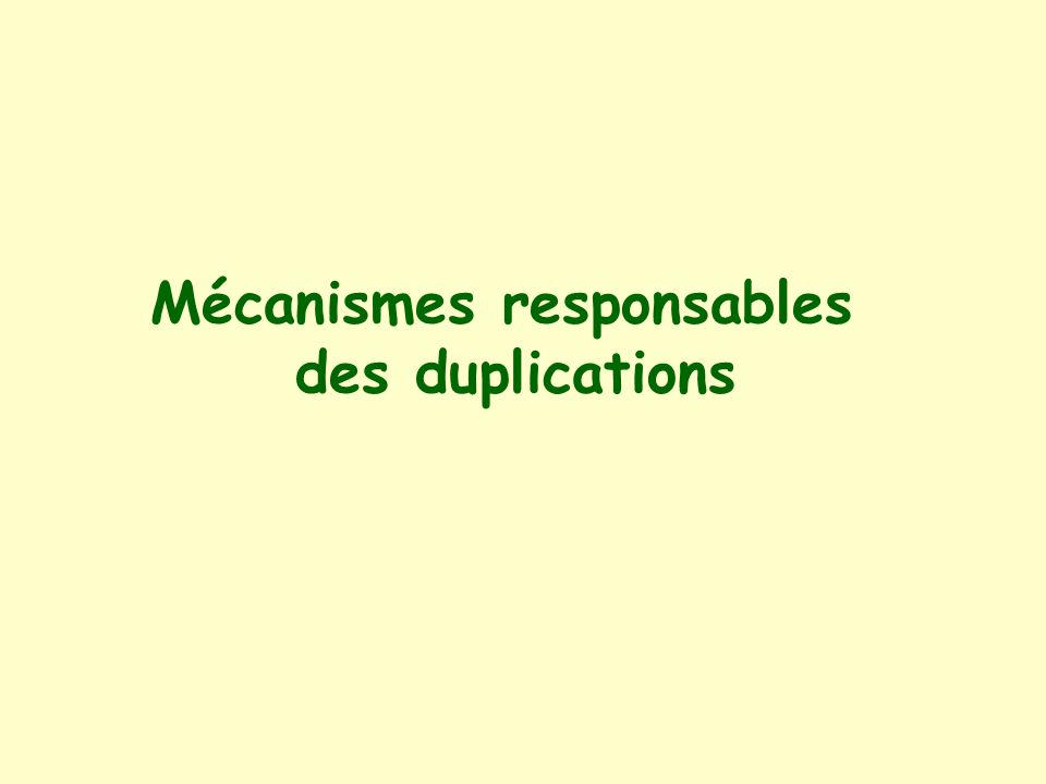 Mécanismes responsables des duplications