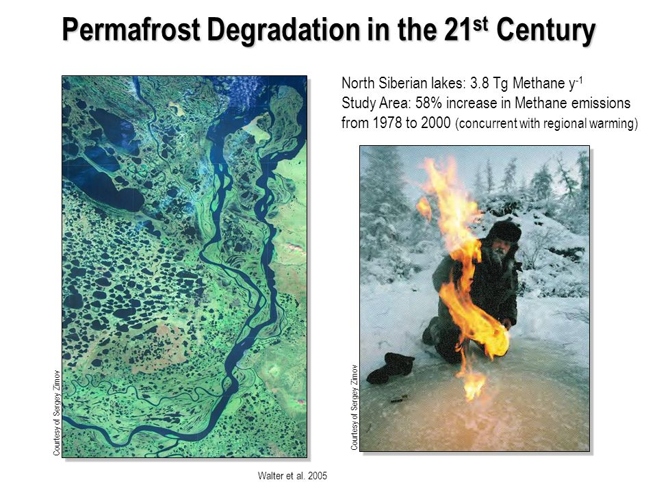 Permafrost Degradation in the 21 st Century Walter et al.