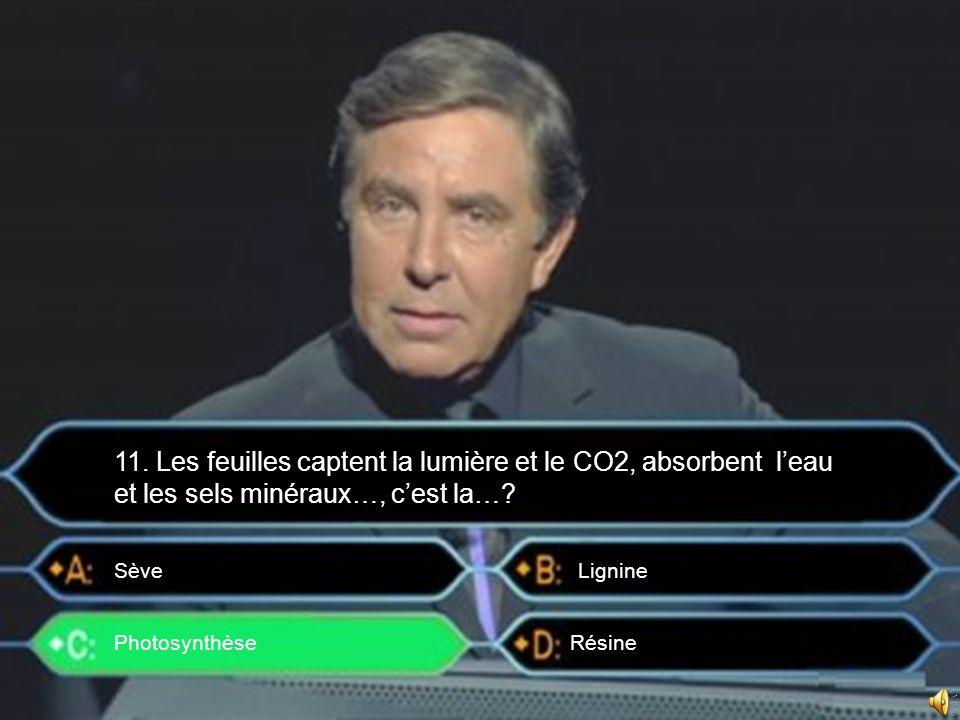 Photosynthèse Sève 11. Les feuilles captent la lumière et le CO2, absorbent leau et les sels minéraux…, cest la…? Lignine Résine