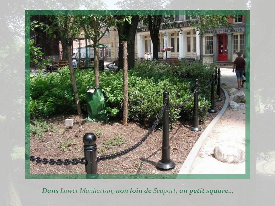 Déjà vus dans un diaporama précédent, les jardins privés des quartiers résidentiels. Ici, nous sommes dans Greenwich Village.