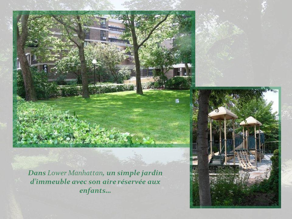 Encore le jardin de lHôtel de Ville.