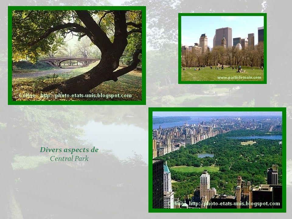 Situé à peu près au centre de lîle de Manhattan, entre la 59 e et la 110 e rue, le Central Park est effectivement le principal poumon de la ville. Mes