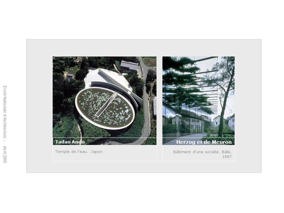 Ecole Nationale dArchitecture - Avril 2005 Tadao Ando Temple de leau. Japon Herzog et de Meuron Bâtiment dune société. Bâle, 1997