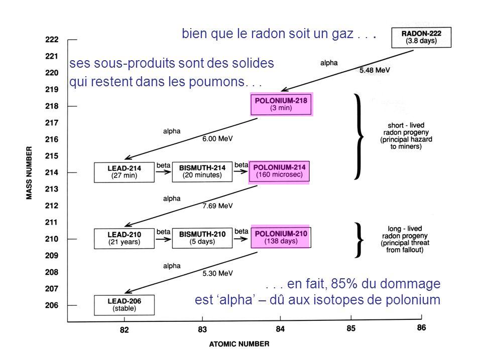 Radon Progeny (chart ) bien que le radon soit un gaz...... en fait, 85% du dommage est alpha – dû aux isotopes de polonium ses sous-produits sont des