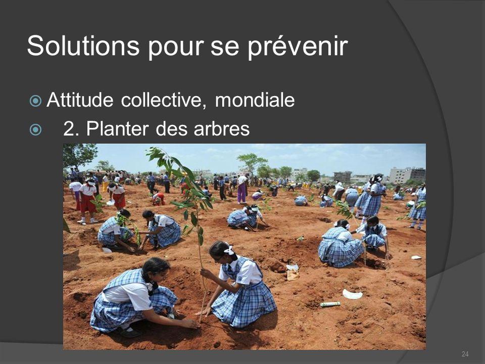 24 Solutions pour se prévenir Attitude collective, mondiale 2. Planter des arbres