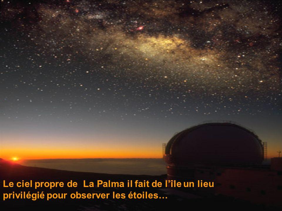 Le ciel propre de La Palma il fait de lîle un lieu privilégié pour observer les étoiles…