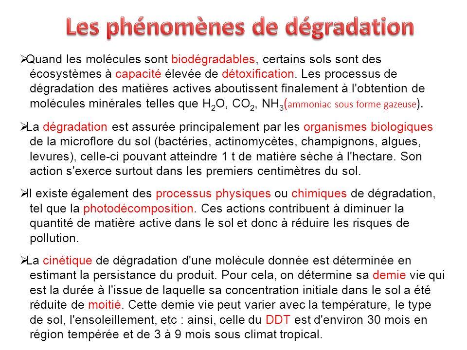 Quand les molécules sont biodégradables, certains sols sont des écosystèmes à capacité élevée de détoxification. Les processus de dégradation des mati