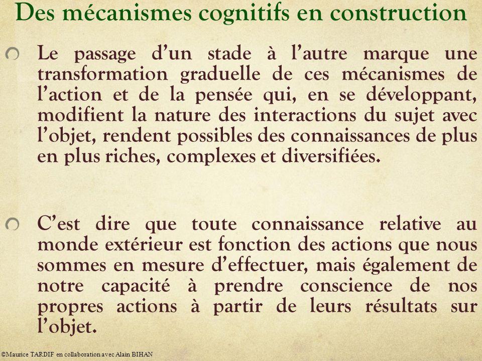 Des mécanismes cognitifs en construction Le passage dun stade à lautre marque une transformation graduelle de ces mécanismes de laction et de la pensé