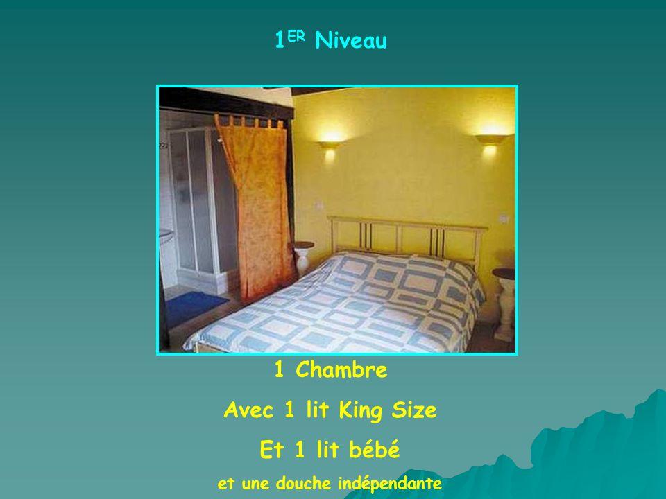 1 ER Niveau 1 Chambre Avec 1 lit King Size Et 1 lit bébé et une douche indépendante