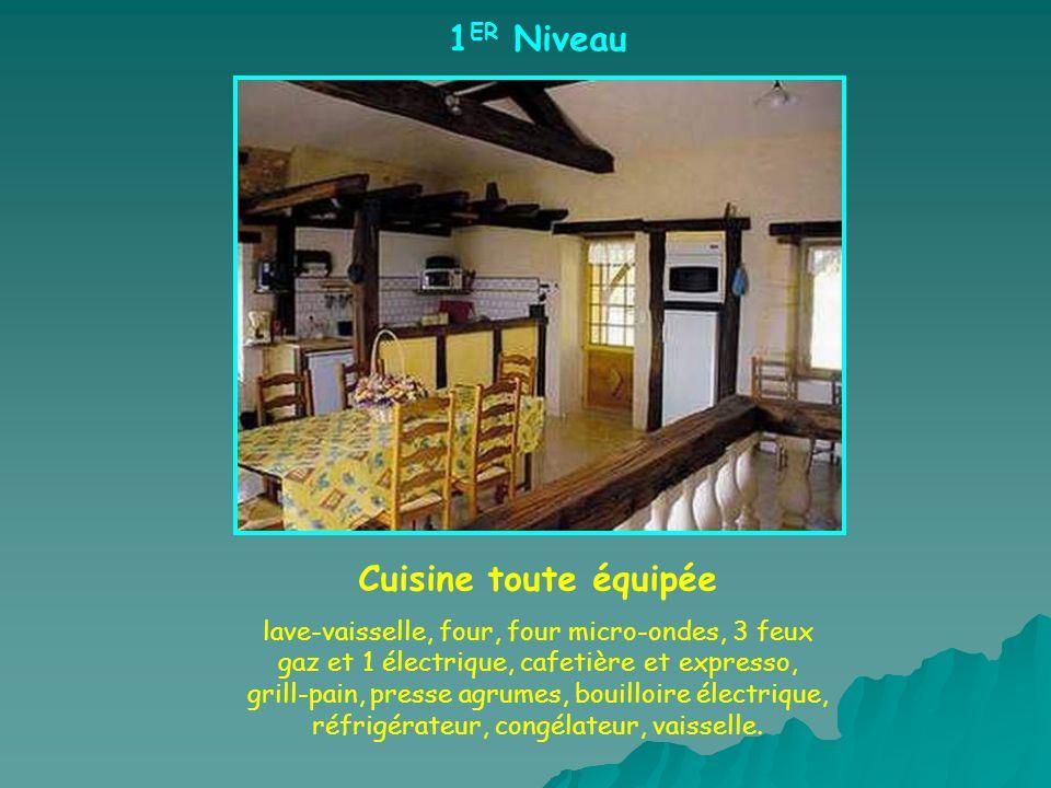 1 ER Niveau Cuisine toute équipée lave-vaisselle, four, four micro-ondes, 3 feux gaz et 1 électrique, cafetière et expresso, grill-pain, presse agrume