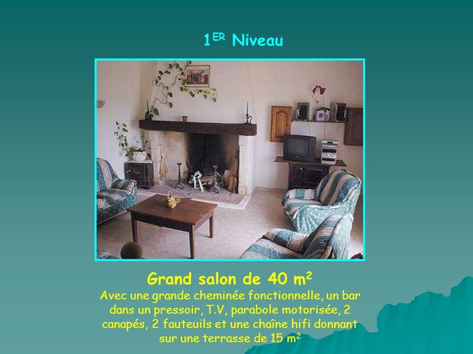 1 ER Niveau Grand salon de 40 m 2 Avec une grande cheminée fonctionnelle, un bar dans un pressoir, T.V, parabole motorisée, 2 canapés, 2 fauteuils et