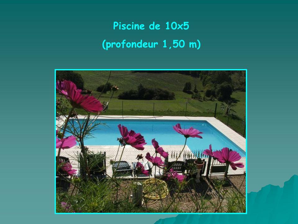 Piscine de 10x5 (profondeur 1,50 m)