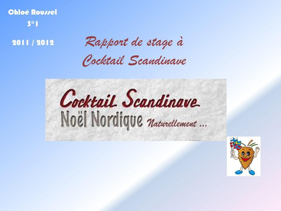 Chloé Roussel 3°1 2011 / 2012 Rapport de stage à Cocktail Scandinave