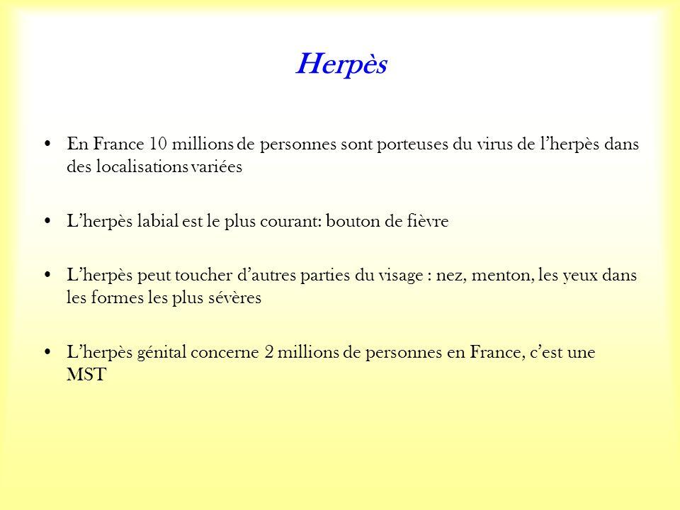 Herpès En France 10 millions de personnes sont porteuses du virus de lherpès dans des localisations variées Lherpès labial est le plus courant: bouton de fièvre Lherpès peut toucher dautres parties du visage : nez, menton, les yeux dans les formes les plus sévères Lherpès génital concerne 2 millions de personnes en France, cest une MST