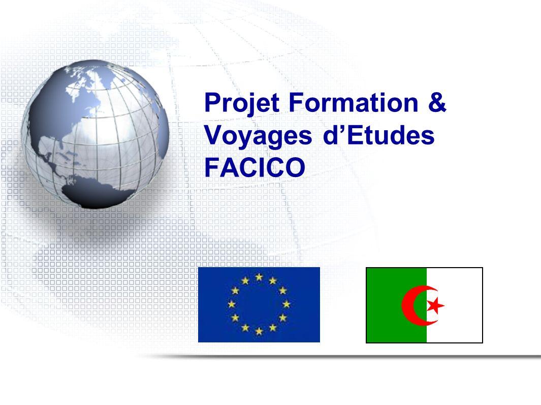 Projet Formation et Voyages dEtudes – FACICO TENDANCE PAR PAYS DE PROENANCE ANNEE 2009 PAYS% CHINE73 % EMIRATS ARABES UNIS03 % FRANCE06 % TURQUIE06 % HONG KONG03 % THAILANDE03 % AUTRES03 %