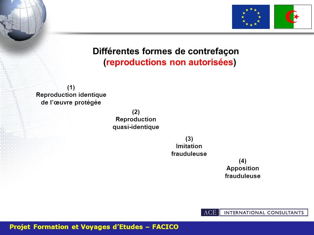 Projet Formation et Voyages dEtudes – FACICO Différentes formes de contrefaçon (reproductions non autorisées) (1) Reproduction identique de lœuvre pro