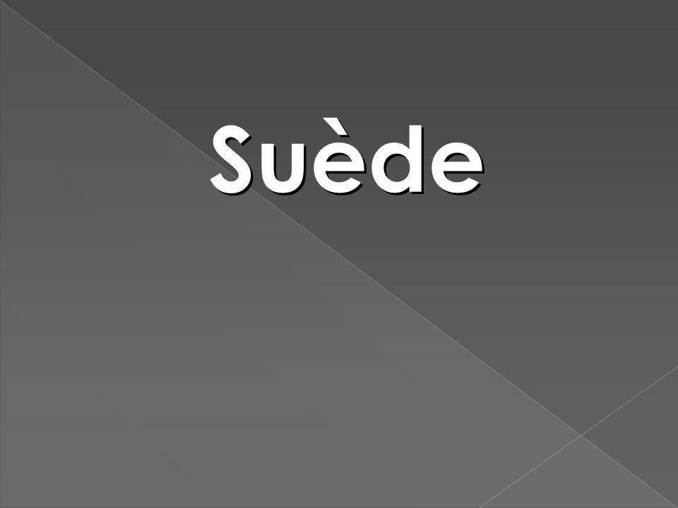 À ce moment les élèves ont écoutés une phrase en suédois