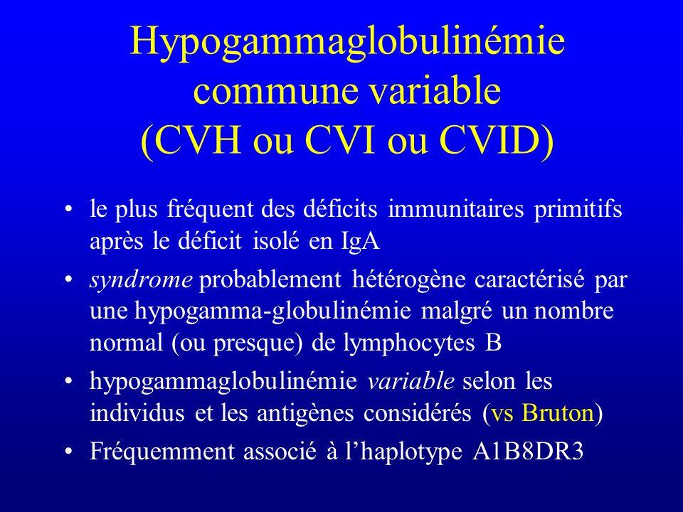 Hypogammaglobulinémie commune variable (CVH ou CVI ou CVID) le plus fréquent des déficits immunitaires primitifs après le déficit isolé en IgA syndrom
