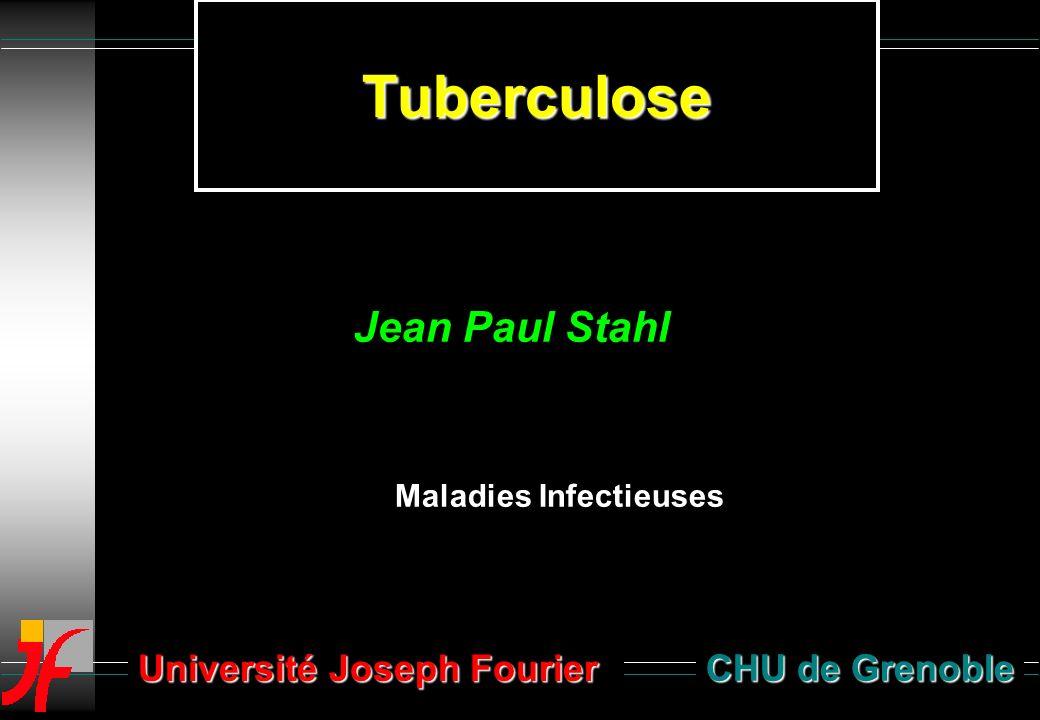 Tuberculose CHU de Grenoble Maladies Infectieuses Jean Paul Stahl Université Joseph Fourier