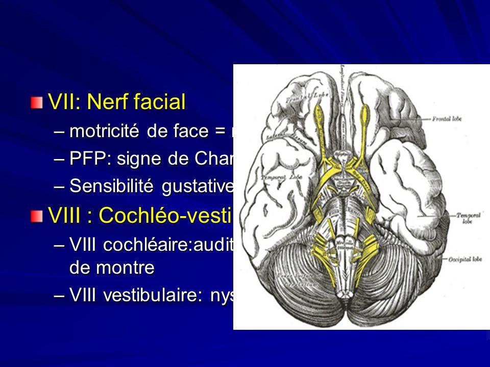 VII: Nerf facial –motricité de face = muscle de mimique, –PFP: signe de Charles-Bell, cils de Souques –Sensibilité gustative 2/3 ant langue VIII : Coc
