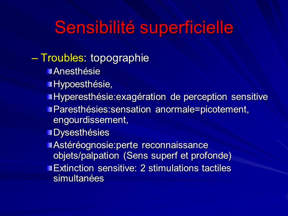 Sensibilité superficielle –Troubles: topographie AnesthésieHypoesthésie, Hyperesthésie:exagération de perception sensitive Paresthésies:sensation anor