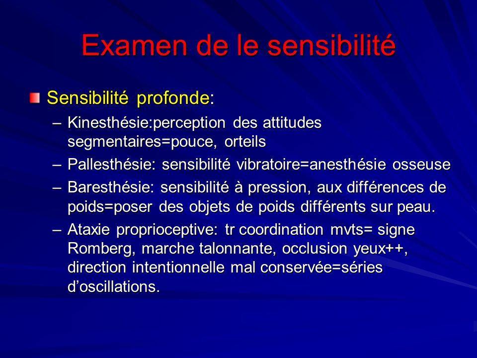 Examen de le sensibilité Sensibilité profonde: –Kinesthésie:perception des attitudes segmentaires=pouce, orteils –Pallesthésie: sensibilité vibratoire