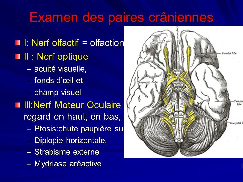 Examen des paires crâniennes I: Nerf olfactif = olfaction, odeurs II : Nerf optique –acuité visuelle, –fonds dœil et –champ visuel III:Nerf Moteur Ocu