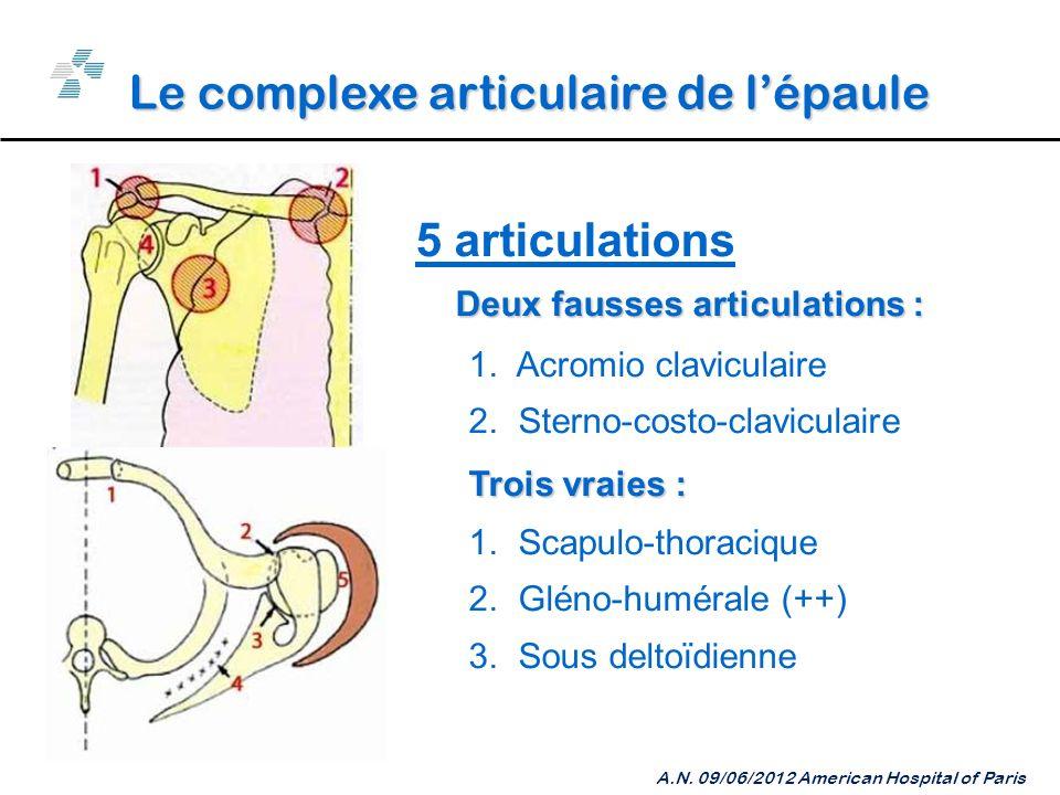 Le complexe articulaire de lépaule A.N.