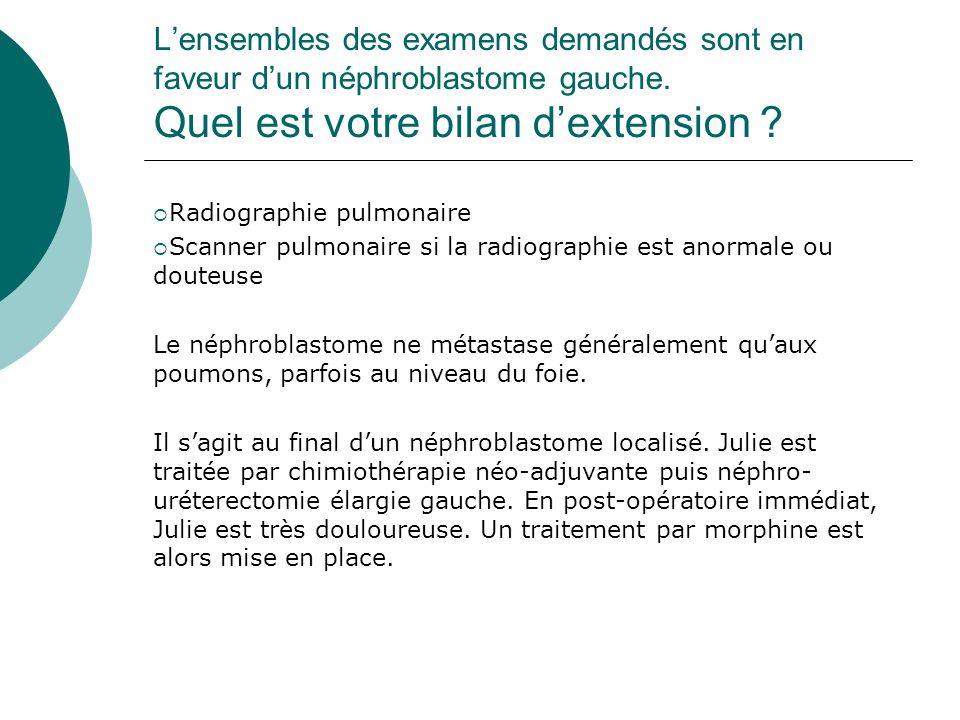 Lensembles des examens demandés sont en faveur dun néphroblastome gauche. Quel est votre bilan dextension ? Radiographie pulmonaire Scanner pulmonaire