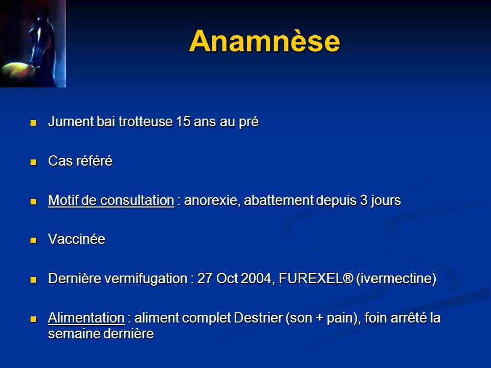 Commémoratifs Anorexie et abattement depuis 5/04/2005 Anorexie et abattement depuis 5/04/2005 Apparition brutale Apparition brutale Aggravation +++ Aggravation +++ Difficulté à se déplacer depuis le 8/04/2005 Difficulté à se déplacer depuis le 8/04/2005