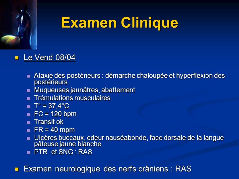 Examen Clinique Muqueuses sales Légère météorisation