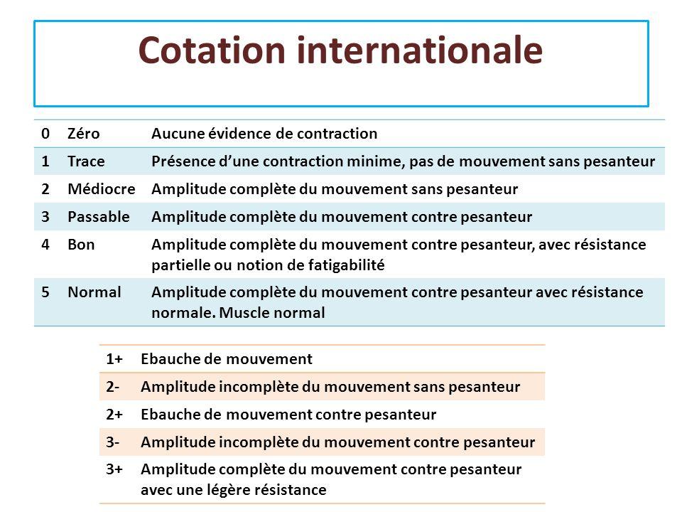 Cotation internationale 0ZéroAucune évidence de contraction 1TracePrésence dune contraction minime, pas de mouvement sans pesanteur 2MédiocreAmplitude