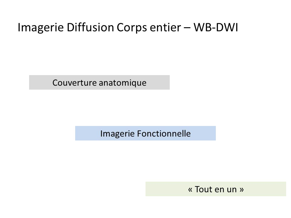 Temps dacquisition : 20 – 45 1.Whole Body Scout View 2.Sagittal T1 SE 3.Coronal T2 TSE FS / STIR (2 à 3 Steps) (HASTE / Transverse TSE - > Lung) 4.