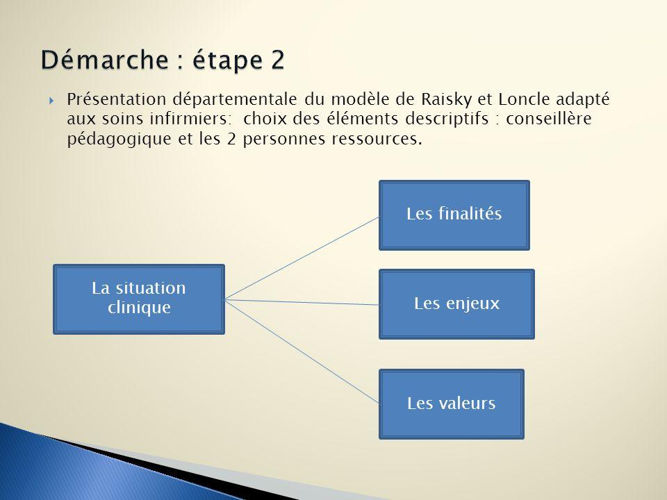 Présentation départementale du modèle de Raisky et Loncle adapté aux soins infirmiers: choix des éléments descriptifs : conseillère pédagogique et les