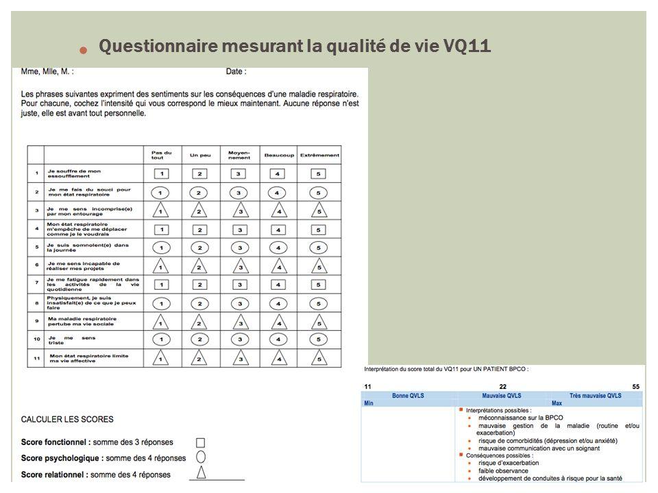 Questionnaire mesurant la qualité de vie VQ11