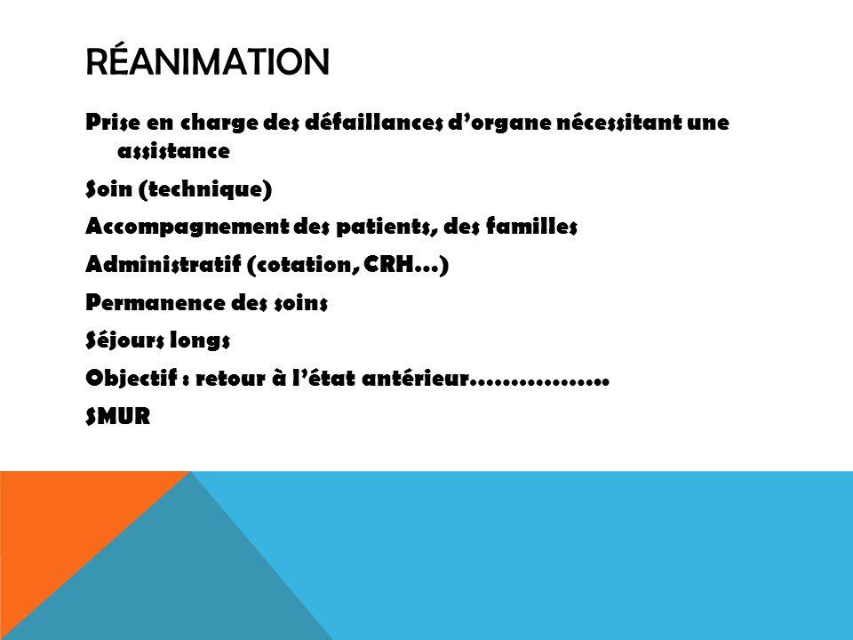 RÉANIMATION Prise en charge des défaillances dorgane nécessitant une assistance Soin (technique) Accompagnement des patients, des familles Administrat