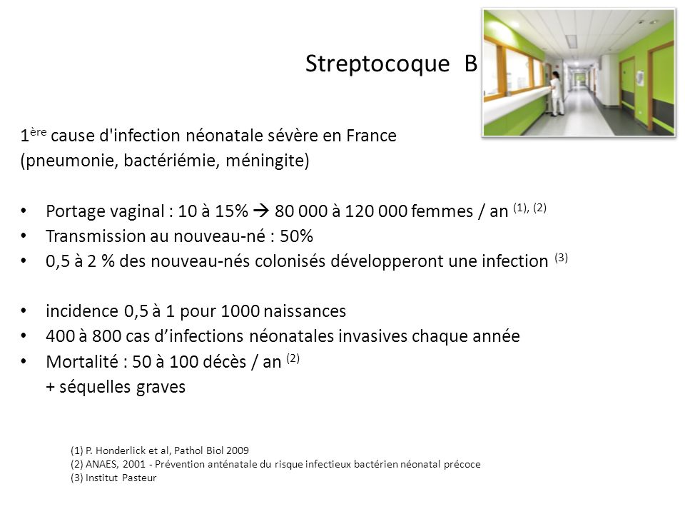 Streptocoque B 1 ère cause d'infection néonatale sévère en France (pneumonie, bactériémie, méningite) Portage vaginal : 10 à 15% 80 000 à 120 000 femm