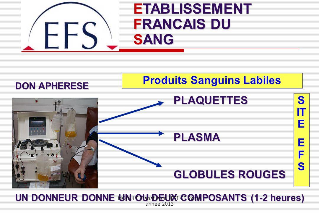ETABLISSEMENT FRANCAIS DU SANG Produits Sanguins Labiles S IT E E F S PLAQUETTESPLASMA GLOBULES ROUGES DON APHERESE UN DONNEUR DONNE UN OU DEUX COMPOS