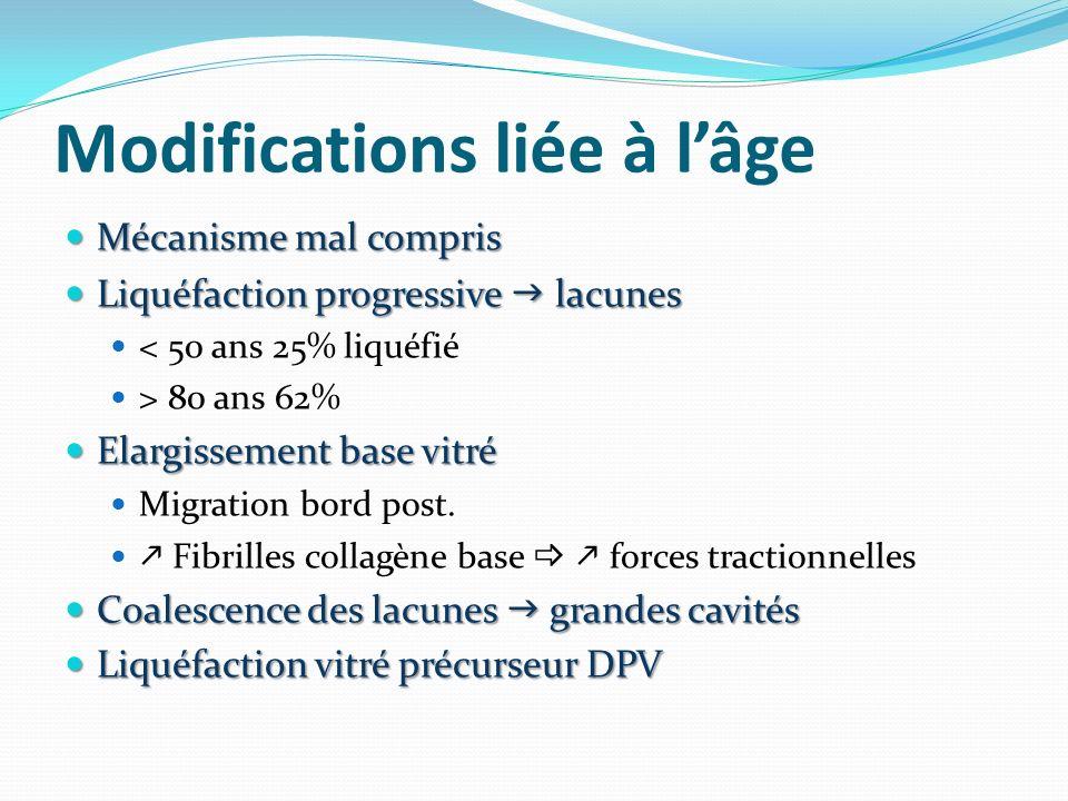 Modifications liée à lâge Mécanisme mal compris Mécanisme mal compris Liquéfaction progressive lacunes Liquéfaction progressive lacunes < 50 ans 25% l