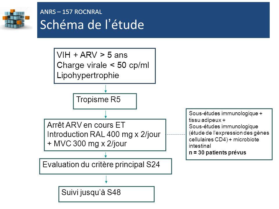 67 VIH + ARV > 5 ans Charge virale < 50 cp/ml Lipohypertrophie Arrêt ARV en cours ET Introduction RAL 400 mg x 2/jour + MVC 300 mg x 2/jour Evaluation du critère principal S24 Tropisme R5 ANRS – 157 ROCNRAL Schéma de létude Suivi jusquà S48 Sous-études immunologique + tissu adipeux + Sous-études immunologique (étude de lexpression des gènes cellulaires CD4) + microbiote intestinal n = 30 patients prévus