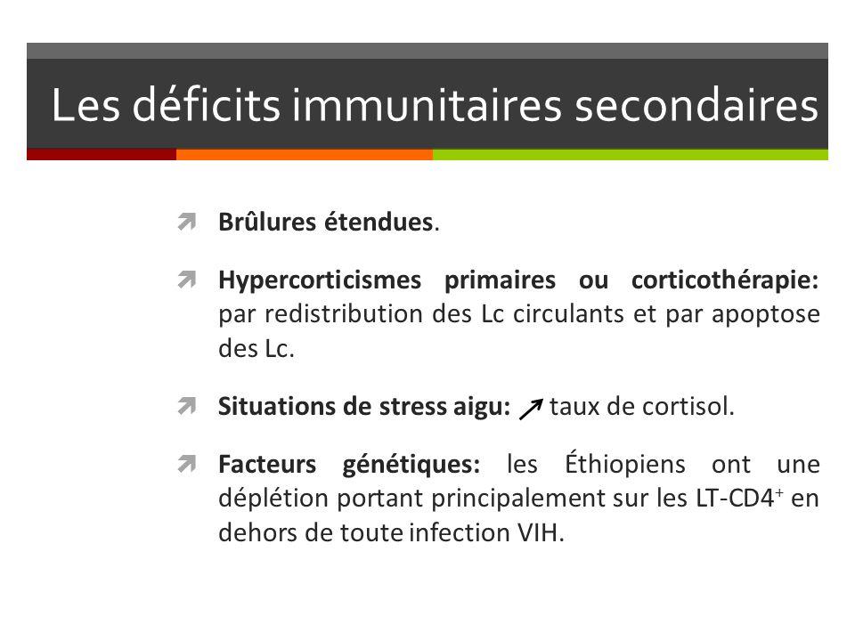 Les déficits immunitaires secondaires Brûlures étendues. Hypercorticismes primaires ou corticothérapie: par redistribution des Lc circulants et par ap