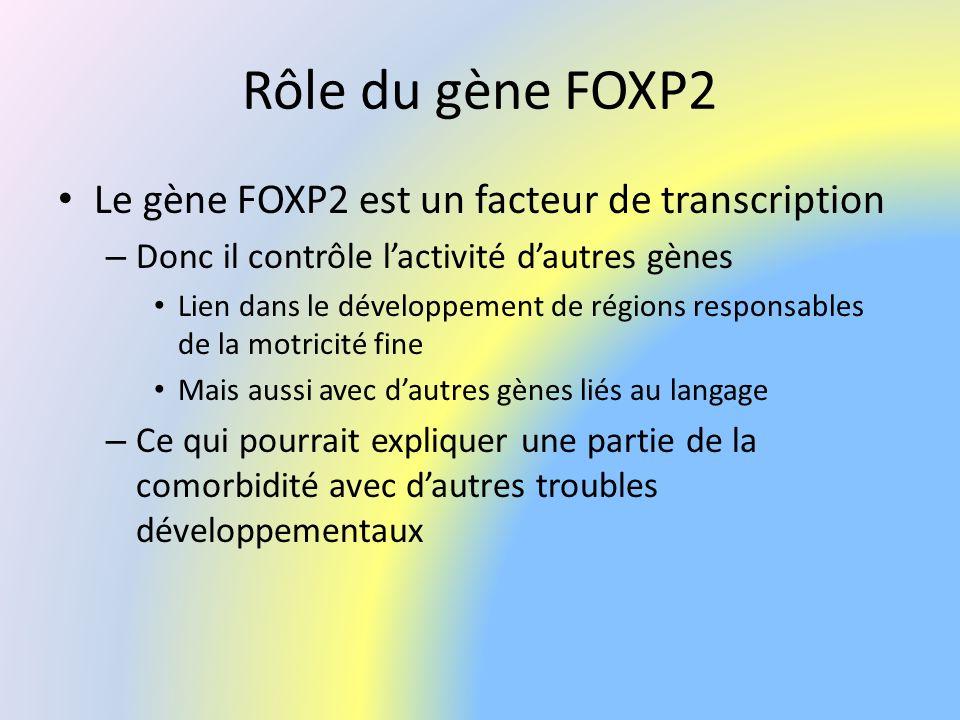 Rôle du gène FOXP2 Le gène FOXP2 est un facteur de transcription – Donc il contrôle lactivité dautres gènes Lien dans le développement de régions resp