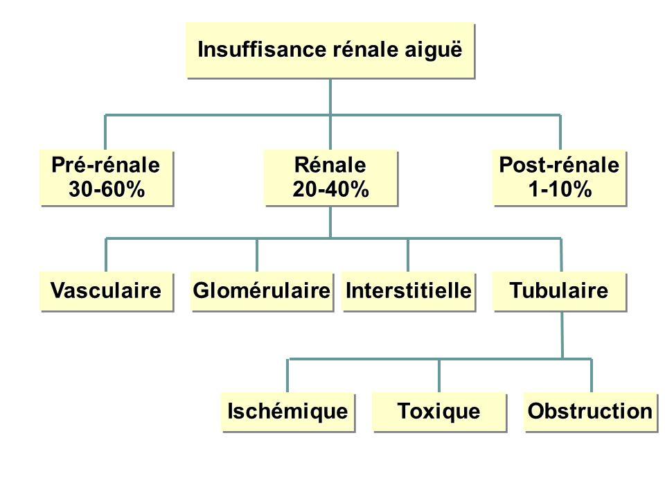 Insuffisance rénale aiguë Pré-rénale30-60%Pré-rénale30-60%Rénale20-40%Rénale20-40%Post-rénale1-10%Post-rénale1-10% VasculaireVasculaireGlomérulaireGlomérulaireInterstitielleInterstitielleTubulaireTubulaire IschémiqueIschémiqueToxiqueToxiqueObstructionObstruction