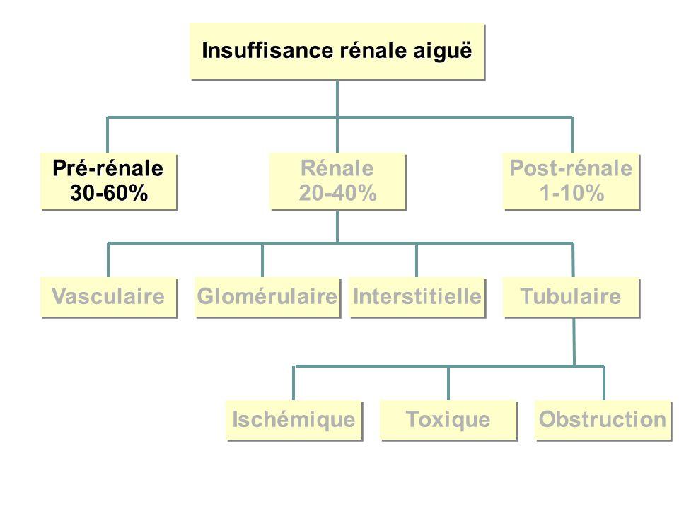 Insuffisance rénale aiguë Pré-rénale30-60%Pré-rénale30-60% Rénale 20-40% Rénale 20-40% Post-rénale 1-10% Post-rénale 1-10% Vasculaire Glomérulaire Interstitielle Tubulaire Ischémique Toxique Obstruction