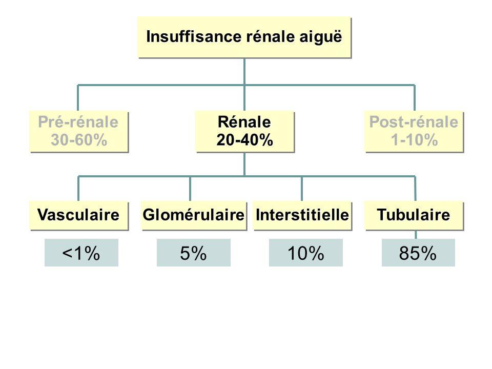 Insuffisance rénale aiguë Pré-rénale 30-60% Pré-rénale 30-60%Rénale20-40%Rénale20-40% Post-rénale 1-10% Post-rénale 1-10% VasculaireVasculaireGlomérulaireGlomérulaireInterstitielleInterstitielleTubulaireTubulaire <1%5%10%85%