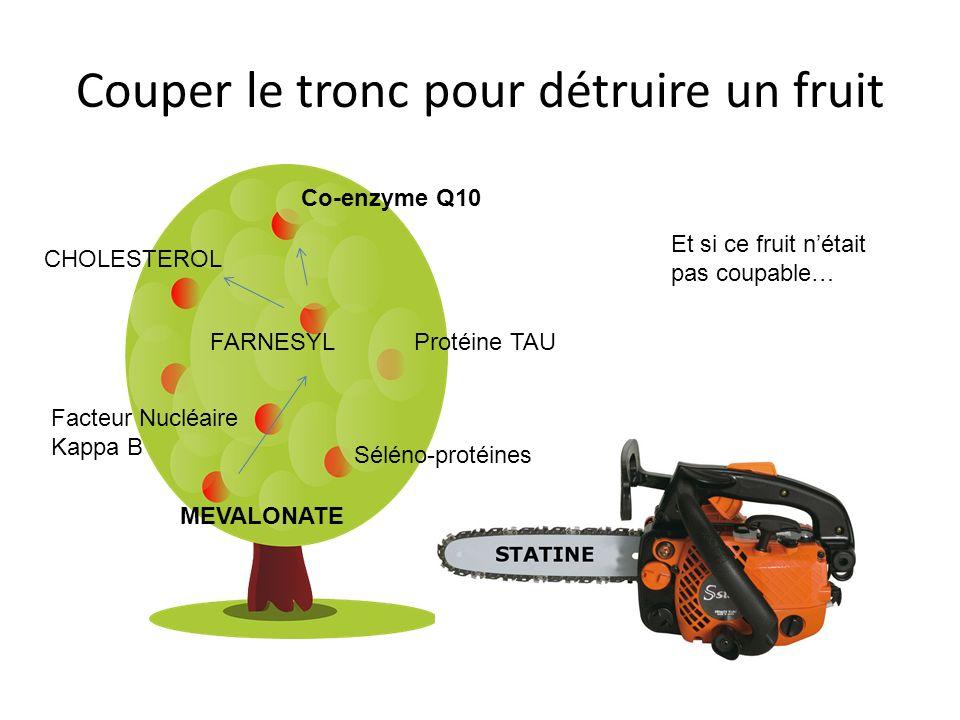 Couper le tronc pour détruire un fruit CHOLESTEROL FARNESYLProtéine TAU MEVALONATE Co-enzyme Q10 Séléno-protéines Facteur Nucléaire Kappa B Et si ce fruit nétait pas coupable…