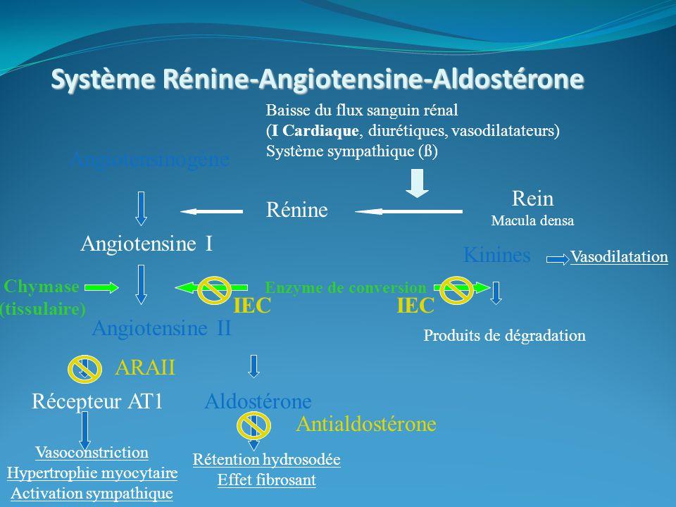 Système Rénine-Angiotensine-Aldostérone Rein Macula densa Angiotensinogène Angiotensine I Angiotensine II Rénine Enzyme de conversion Kinines Produits de dégradation Aldostérone Baisse du flux sanguin rénal (I Cardiaque, diurétiques, vasodilatateurs) Système sympathique (ß) Vasoconstriction Hypertrophie myocytaire Activation sympathique Rétention hydrosodée Effet fibrosant Vasodilatation IEC Récepteur AT1 Antialdostérone ARAII IEC Chymase (tissulaire)